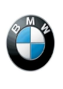 BMW ANTIFREEZE (для W16), 1,5 литра